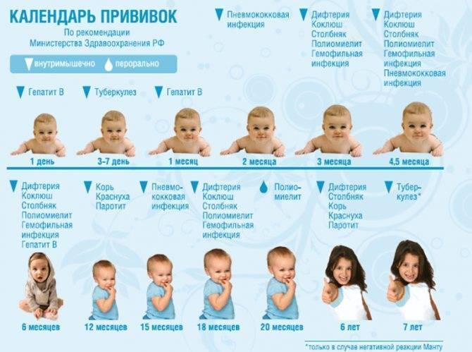 График вакцинации от полиомиелита россия