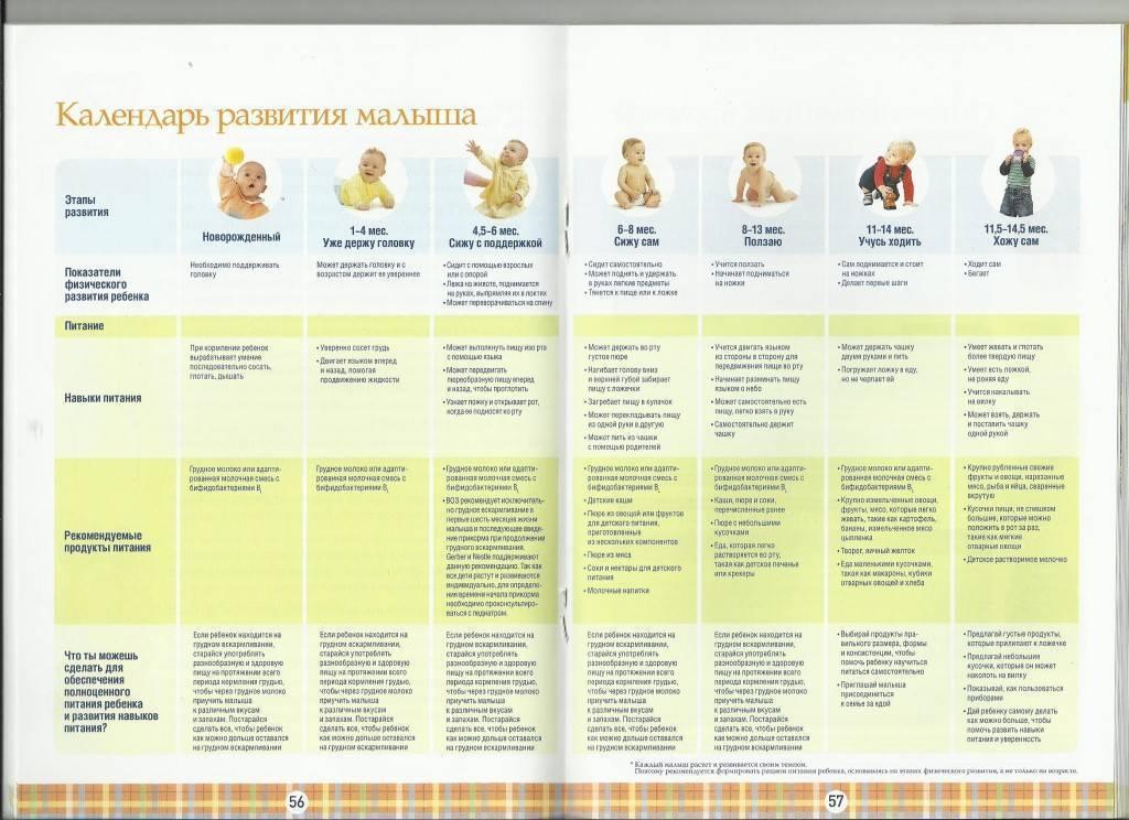 Развитие ребенка по неделям после рождения: от новорожденного до 1 года