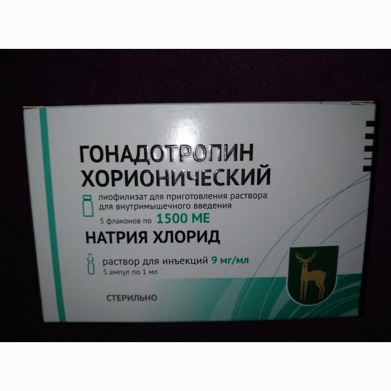 Хорионический гонадотропин: роль в мужском организме, препараты хгч