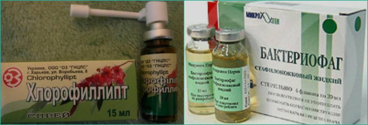 Стафилококк у детей - симптомы и осложнения, диагностика, лечение и профилактика