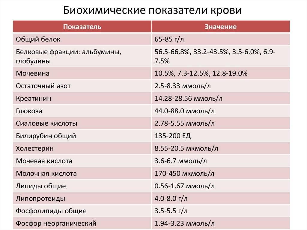 Анализ на  асл-о в крови