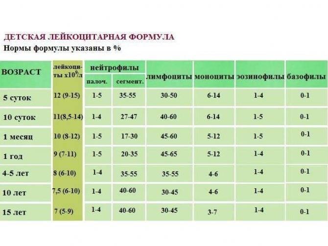 Нейтрофилы понижены у ребенка: сегментоядерные, палочкоядерные, причины, как повысить;палочкоядерные нейтрофилы: у детей, взрослого, по возрасту, норма, повышены, понижены 0