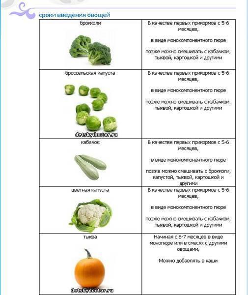 С какого возраста можно давать болгарский перец ребенку: когда этот продукт разрешен? - wikidochelp.ru