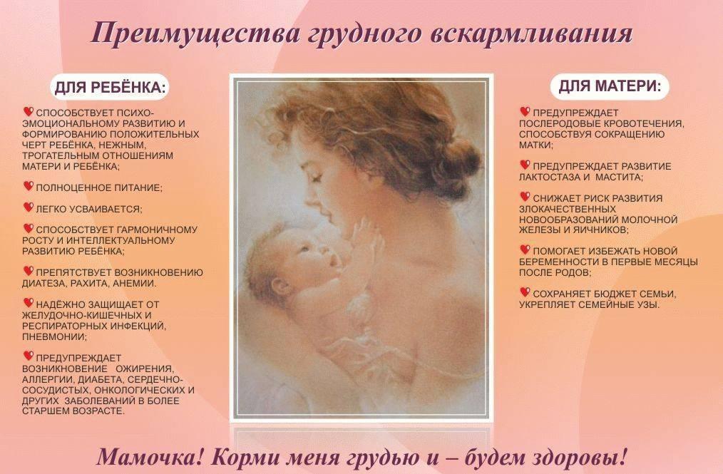 Грудное вскармливание — советы кормящей маме (от комаровского и консультантов гв) - wikidochelp.ru