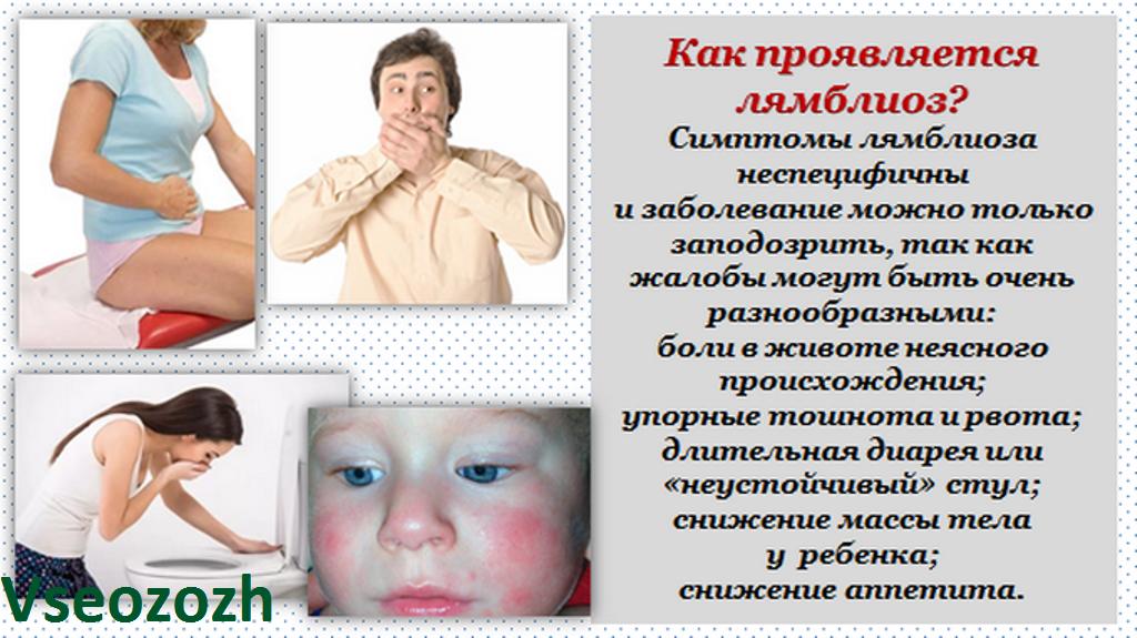 Лямблии у взрослых – симптомы, диагностика и лечение