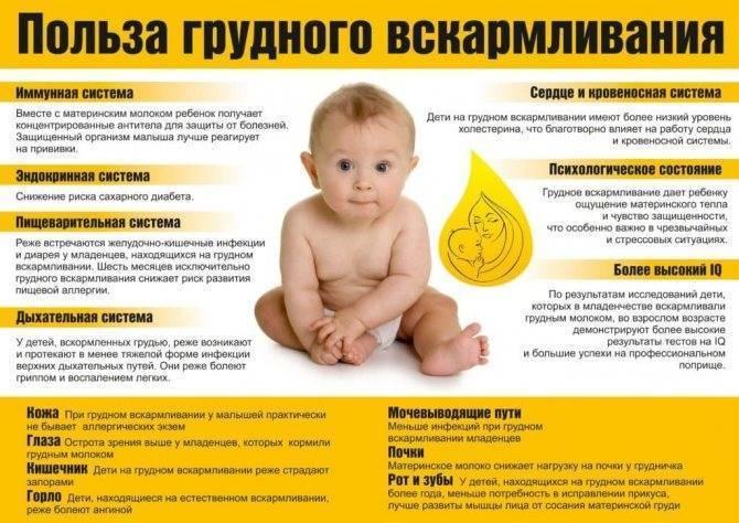 Непереносимость грудного молока: симптомы у новорожденных на материнское молоко