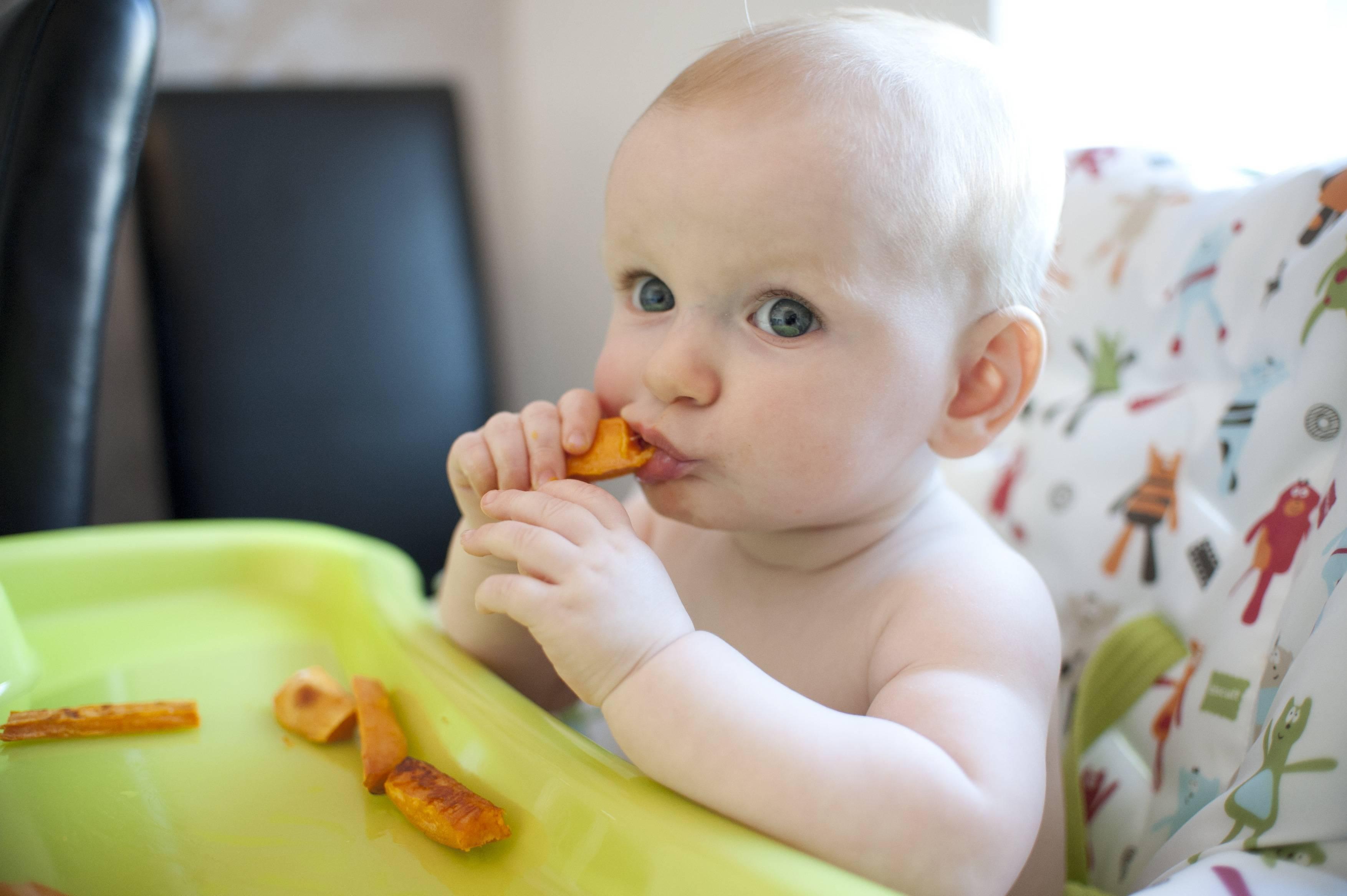 Ребенок не ест прикорм в 7, 8, 9, 10 месяцев: что делать, комаровский