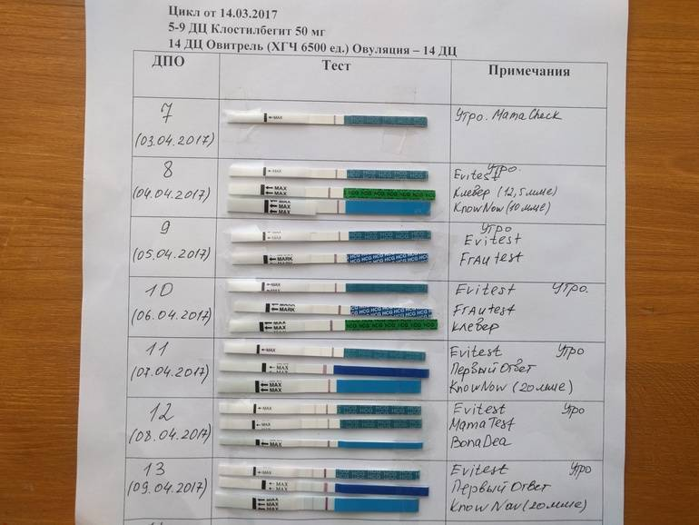 Покажет ли тест беременность на 7 день после зачатия или после первого дня? как скоро – спустя сколько дней показывает результат и какие тесты самые «скорые»?