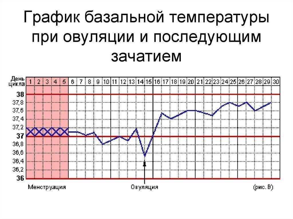 На что указывает повышение температуры перед месячными