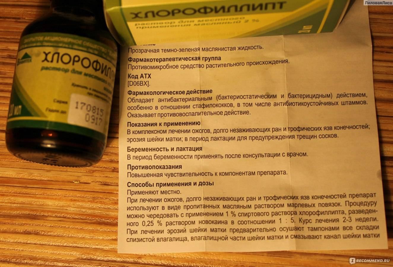 Хлорофиллипт масляный: инструкция по применению раствора