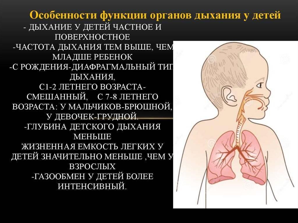 Как дышит ребенок в утробе матери? чем дышит малыш в животе у мамы