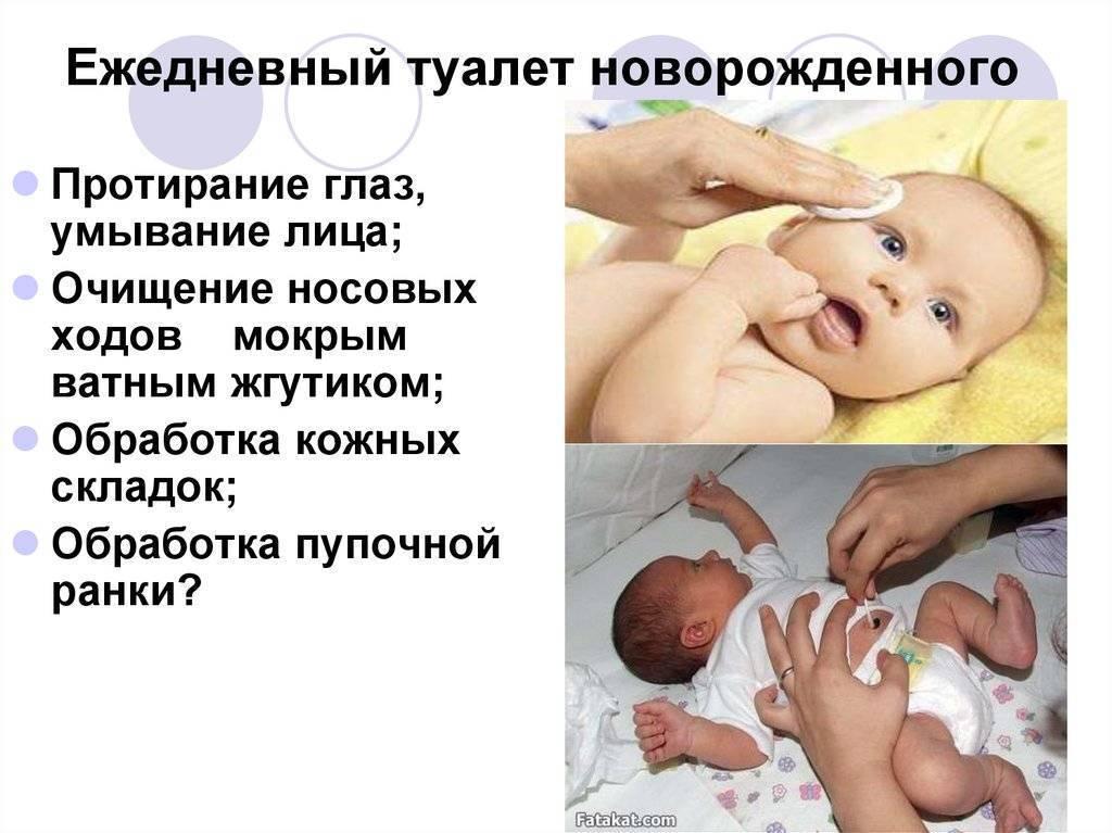 Обработка естественных складок кожи у новорожденных – утренний туалет ребенка