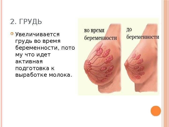 Потемнение сосков у женщин: что означает, причины, нужно ли лечение
