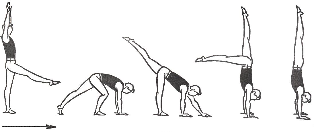 Как сделать колесо гимнастика в домашних условиях. как научить ребенка делать колесо в домашних условиях