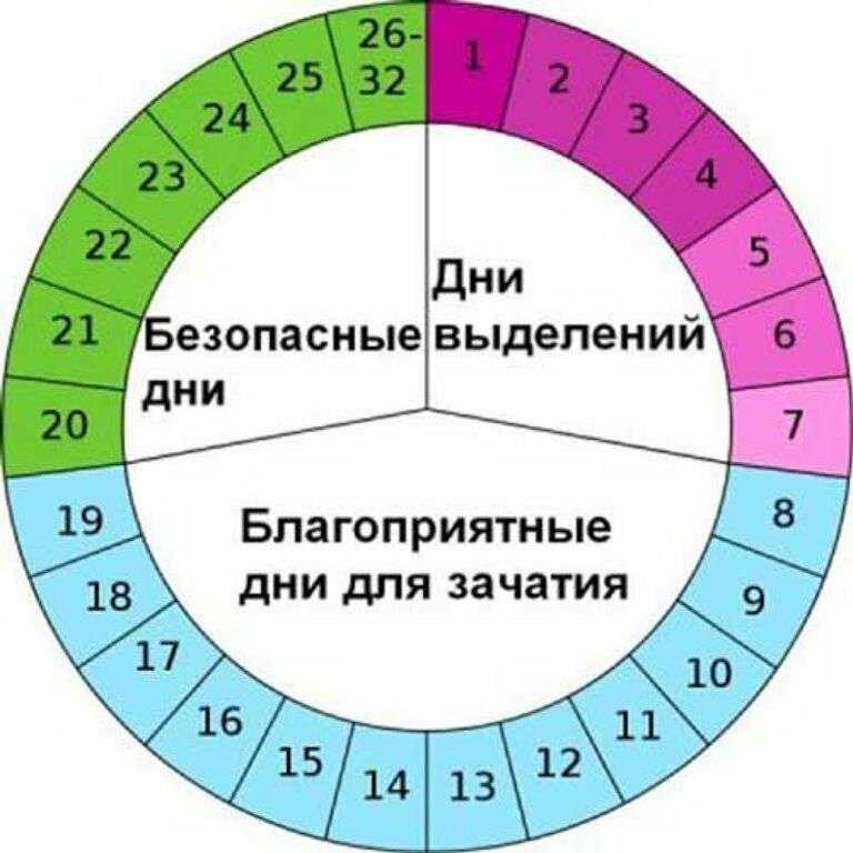 За сколько дней до овуляции можно забеременеть: вероятность зачатия за 2, 4, 5, 6 суток | признаки | vpolozhenii.com