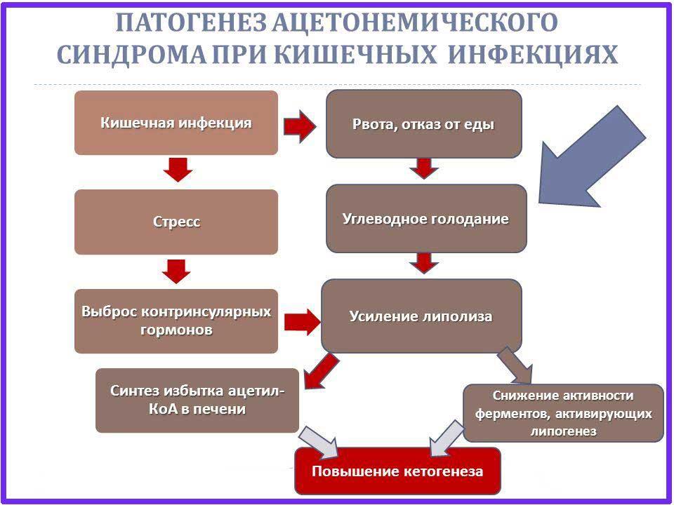 Ацетонемический синдром: суть, клиника (рвота, криз), диагностика, лечение