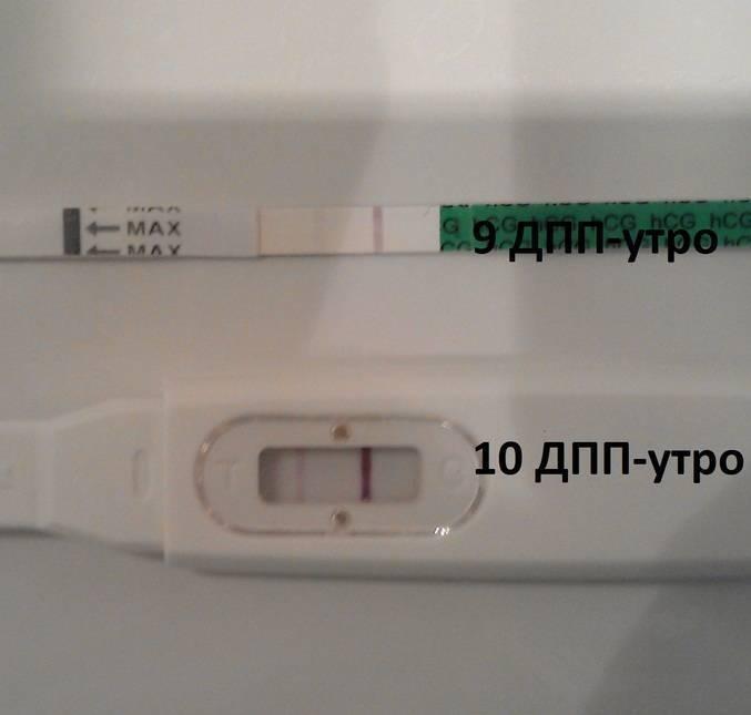 Грипп при переносе эмбрионов