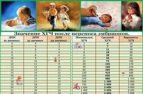 Таблица хгч по дням после эко (29 фото): после переноса эмбрионов 5-дневок, нормы уровня при поздней имплантации и двойне на 12 и 14 дни