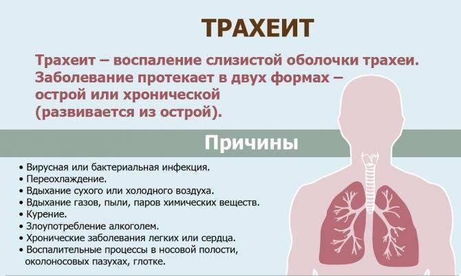 Щекочет в горле и вызывает кашель - чем лечить и что делать, хочется кашлять, причины и лечение щекотания у взрослых, как остановить