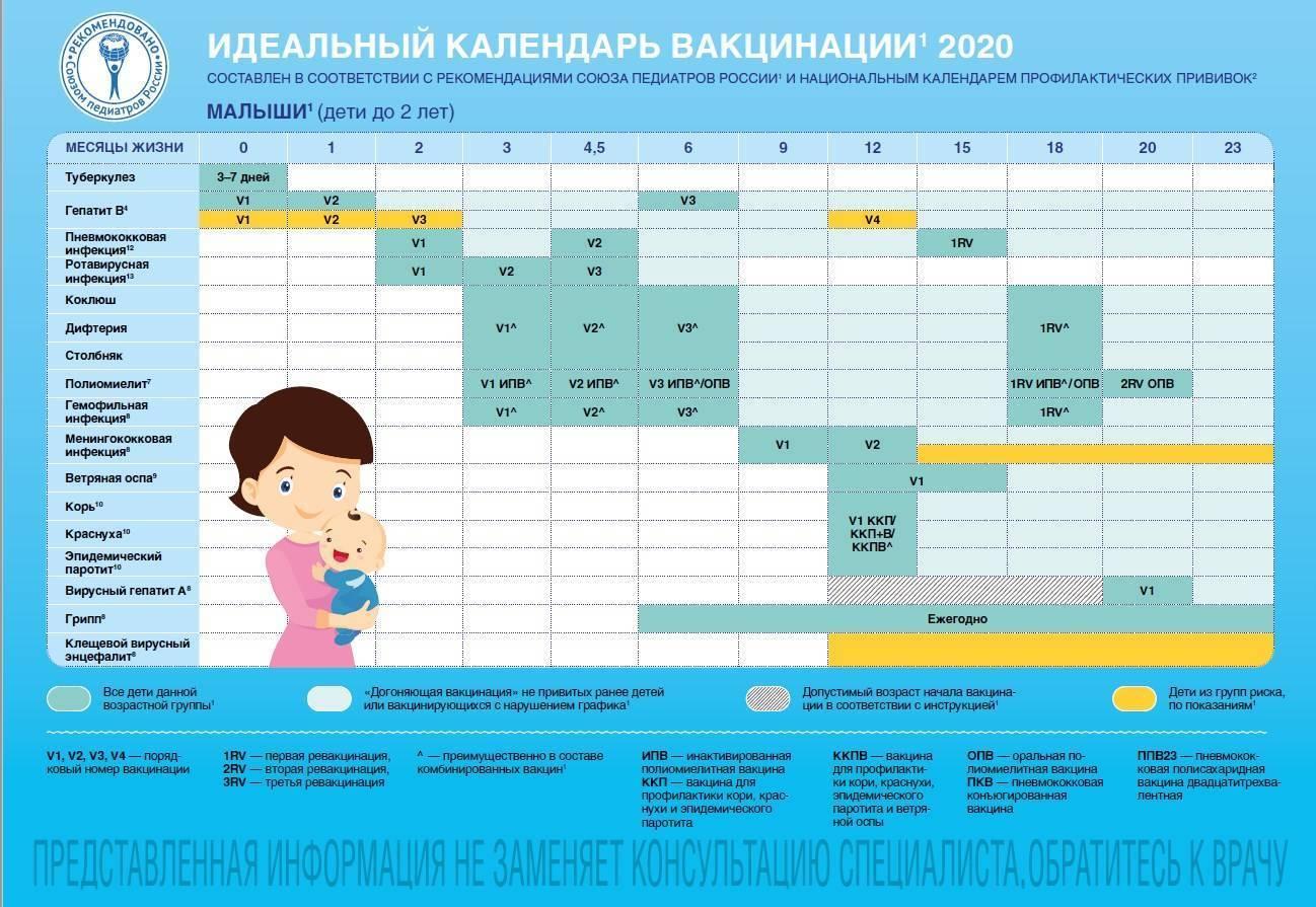 Прививки детям: график до года, календарь вакцинации по месяцам