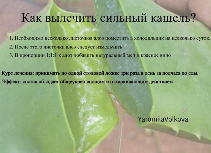 Чем лечить кашель у ребенка в домашних условиях: народные средства и препараты для 2-3 лет   симптомы   vpolozhenii.com