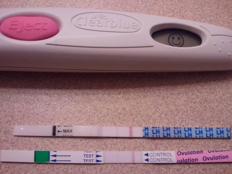 Может ли анализ мочи показывать беременность?
