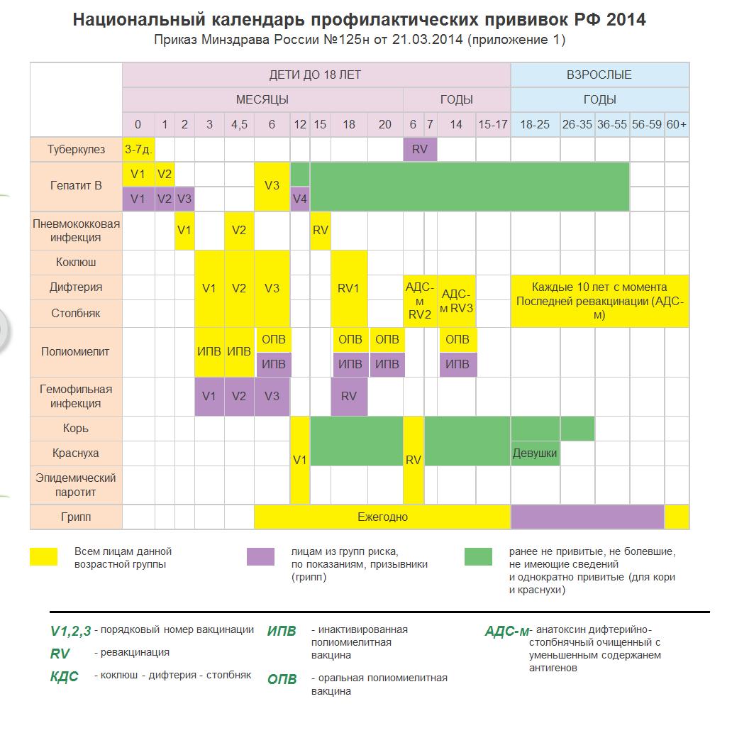 Национальный календарь прививок в 2019 году / mama66.ru
