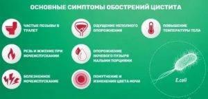 Причины возникновения и симптомы посткоитального цистита