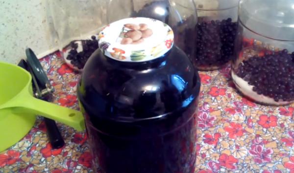 Разрешены ли кормящей маме напитки на основе шиповника: отвар, компот, настой, сироп?