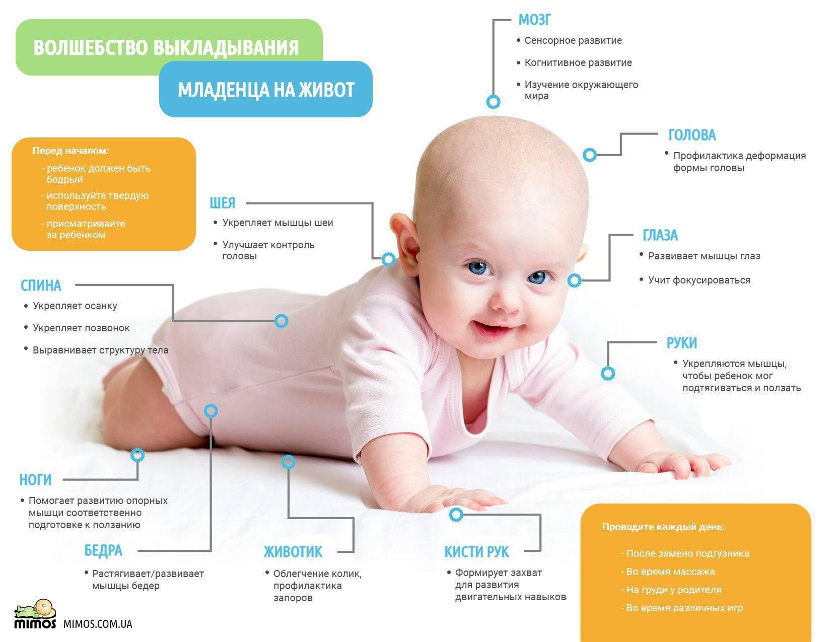 Когда можно выкладывать новорожденного на животик - на сколько и как часто повторять процедуру