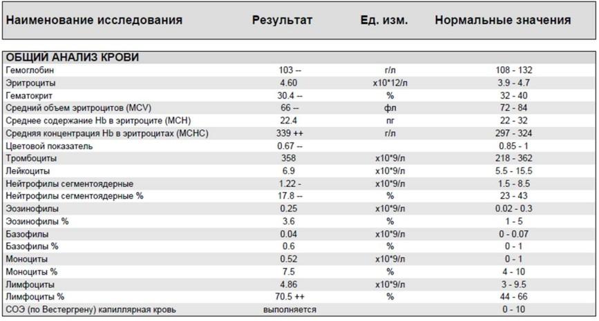Что означают плазматические клетки в анализе крови ребенка