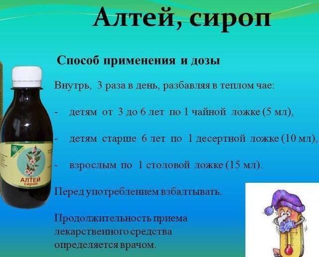 Сироп корня алтея - инструкция по применению для детей: отзывы, как принимать от кашля, детям до года
