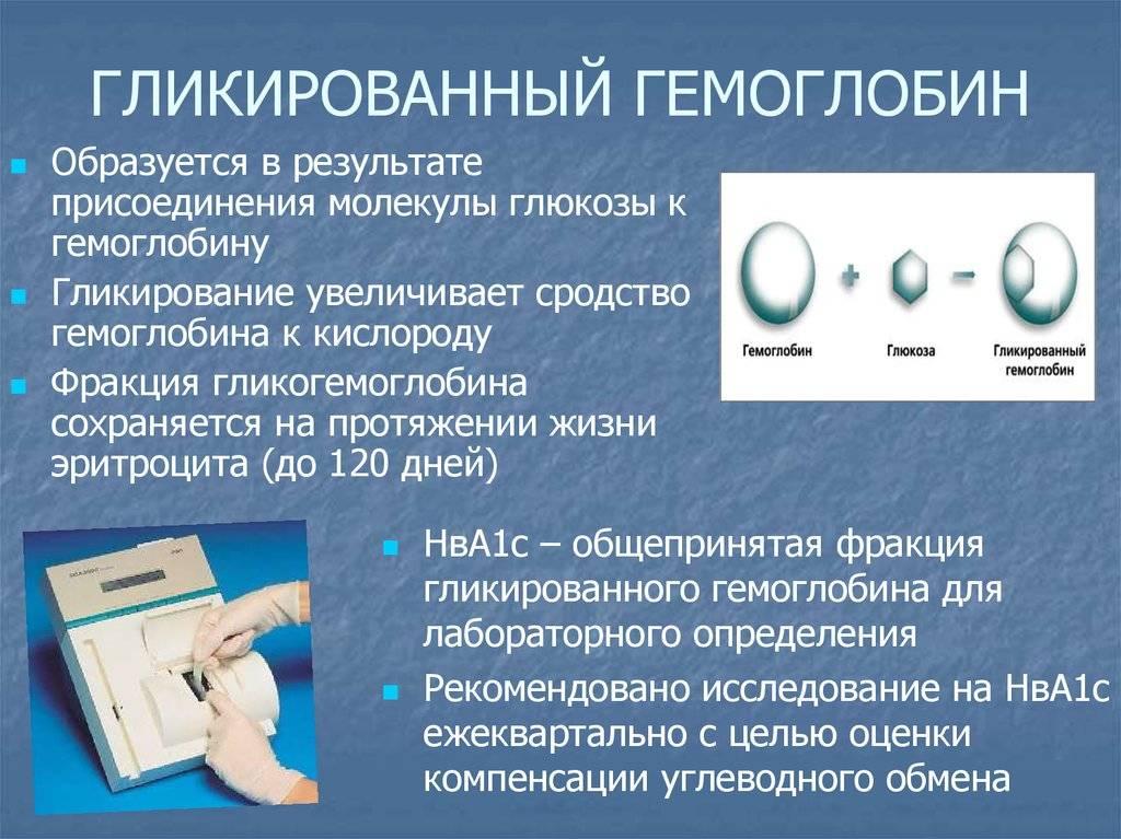 Гликированный гемоглобин при беременности: норма