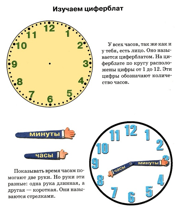 Как научить ребенка понимать время на часах со стрелками | vskormi.ru | яндекс дзен