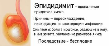 У ребенка болит яичко — причины дискомфорта при прикосновении, симптомы у мальчиков, лечение - wikidochelp.ru
