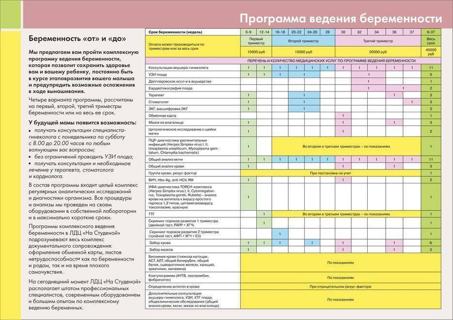 Ведение беременности: постановка на учет, обследования на разных сроках