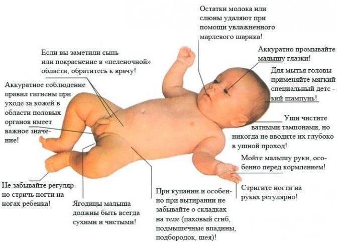 Когда можно купать новорожденного, когда и как можно купать новорожденного ребенка