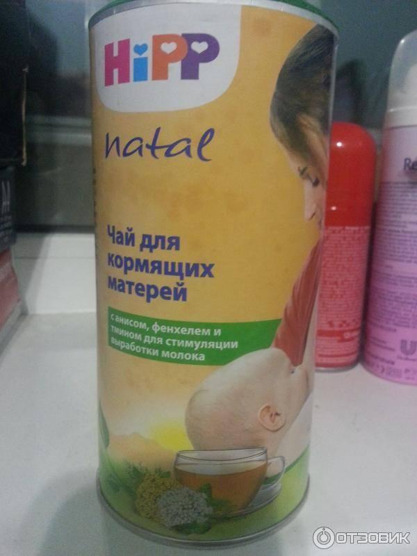 Фенхелевый чай hipp при грудном вскармливании: инструкция для новорожденных и кормящих мам. для улучшения пищеварения