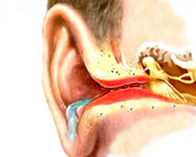 Причина возникновения запаха из ушей у грудничка