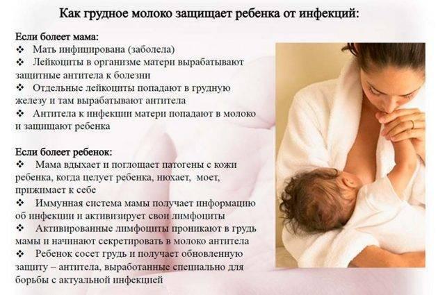 Сгущенка при грудном вскармливании новорожденного - можно ли есть кормящей маме