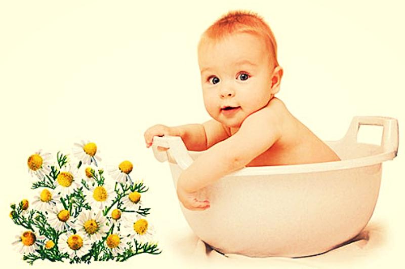 Как заваривать ромашку для купания новорождённых