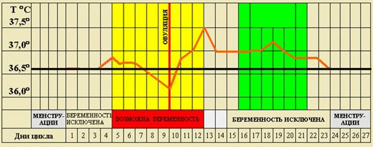 Какая должна быть нормальная ректальная температура перед месячными