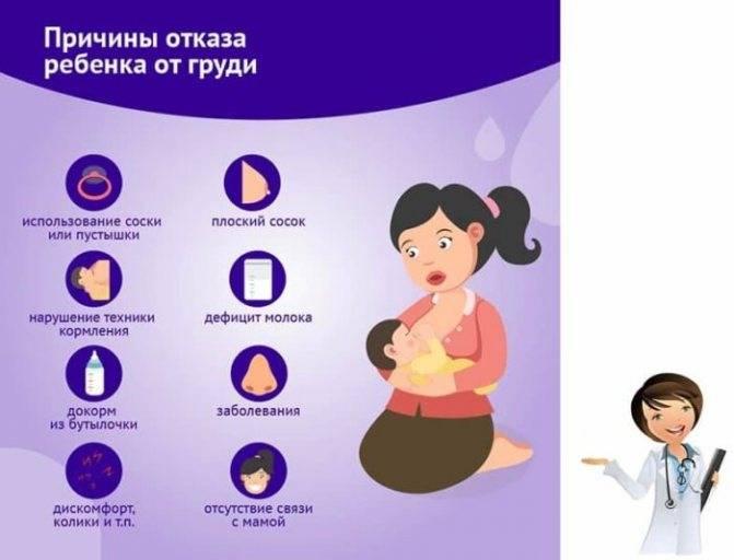 Почему ребенок плачет во время кормления