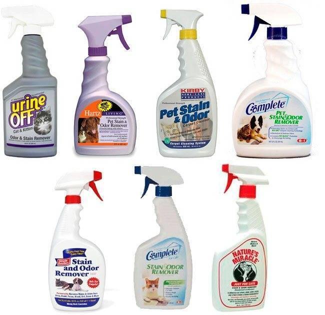 Как избавиться от запаха кошачьей или детской мочи на диване