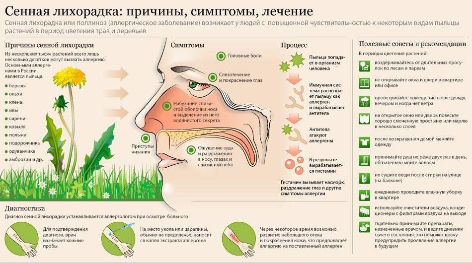 Поллиноз (аллергия на пыльцу). причины, симптомы, методы выявления аллергена, лечение и профилактика :: polismed.com