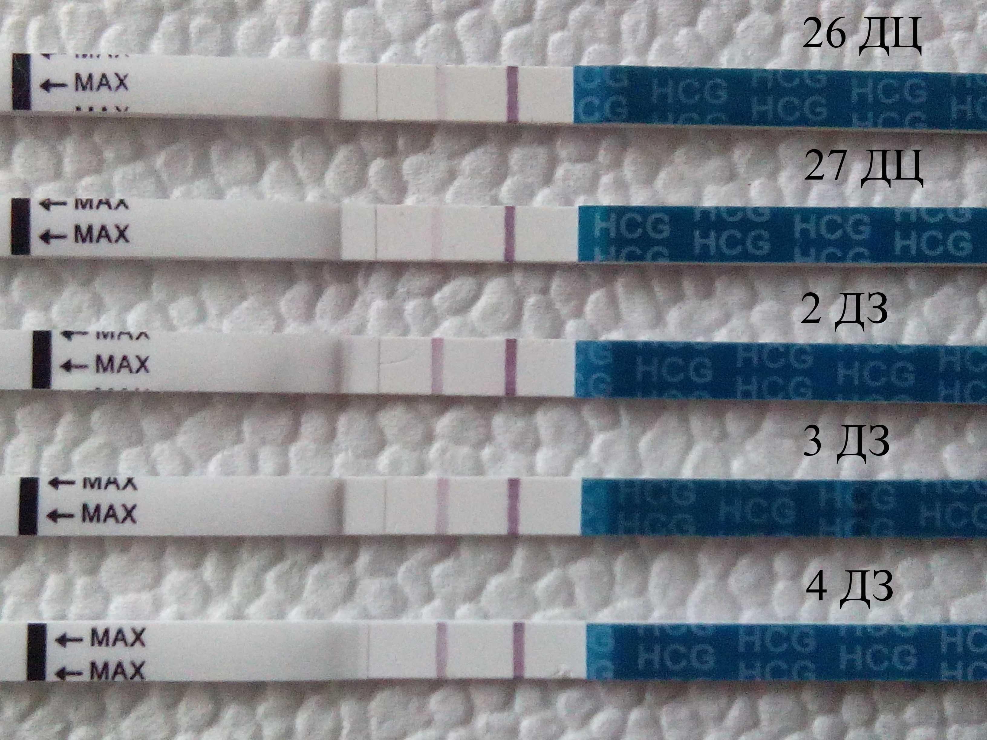 Может ли ошибаться тест на беременность. 5 случайных ошибок