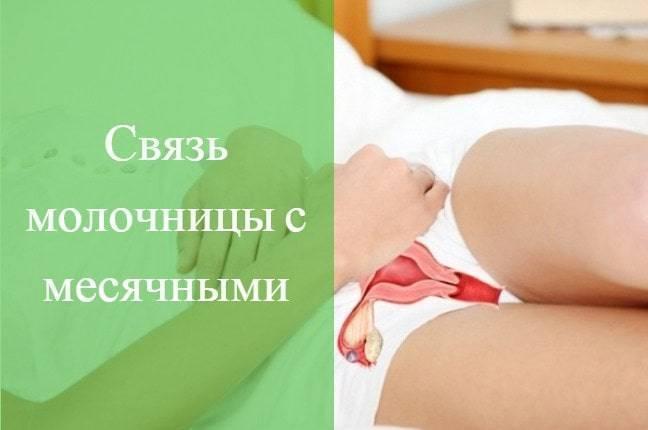 Менструация при простуде – особенности, влияние инфекции на месячный цикл