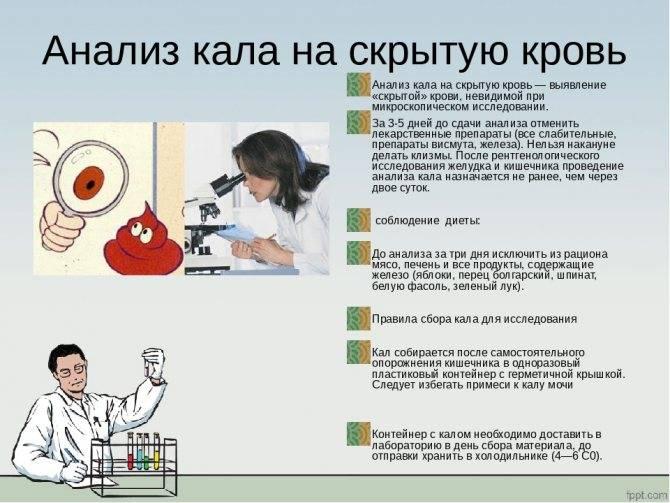 Анализ кала на яйца глист (гельминтов). соскоб на энтеробиоз у детей и взрослых. как правильно подготовиться и как сдать анализ.