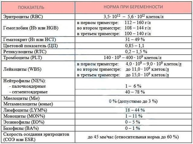Генетические анализы при планировании беременности и консультация генетика перед обследованием крови