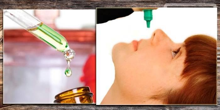 Как используют алоэ в лечении насморка?